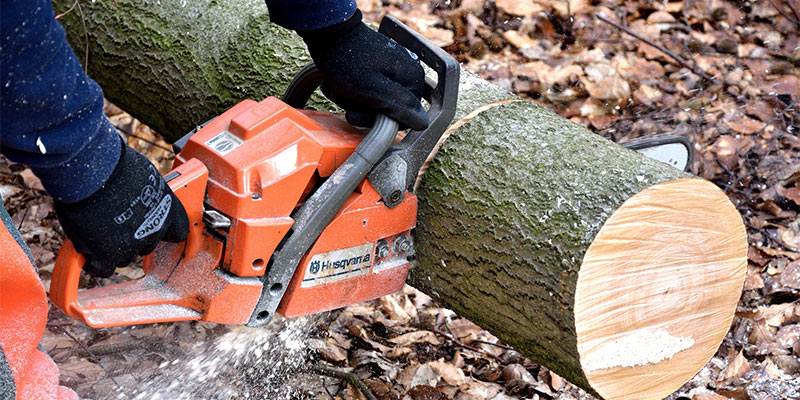best chainsaw uk